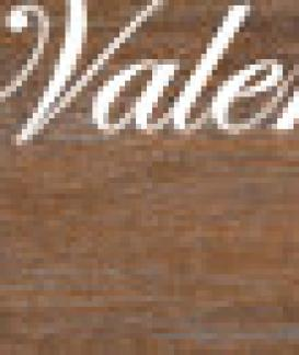 VALENTINOGRESS NEW OAK COFFEE 20 x 120
